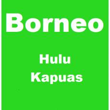 Borneo Hulu Kapuas Capsules